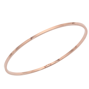SS ROSE VERMEIL 2.5MM SQUARE BANGLE image